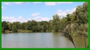 Lakes 9